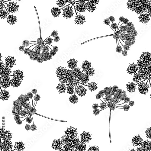 Fotografiet  Seamless pattern with black and white angelica