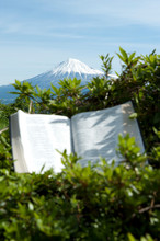 Open Bible With Unfocused Text Outdoors In Beautiful Landscape With Blue Sky. Background With Mount Fuji With Snow Covered Peak. Vertical Shot.