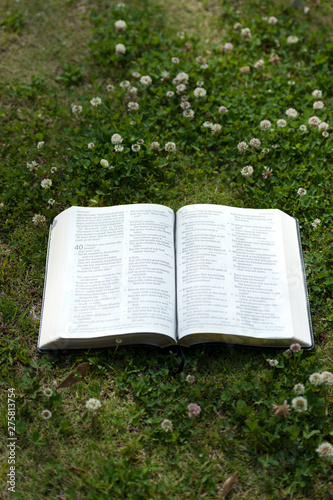 Open Bible outdoor in Isaiah 40:7 on the grass with little flowers around. Vertical shot.