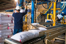 Worker Loading Rows Or Stacks Of White Sack Bags At Large Warehouse In Modern Factory. Packacing In Factory Or Warehouse