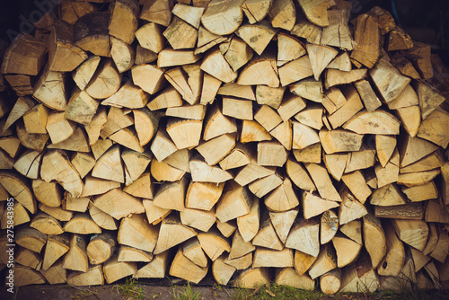 Poster Firewood texture Barbecue firewood. Dry wooden sticks are stacked in a stack.Barbecue firewood. Dry wooden sticks are stacked in a stack.