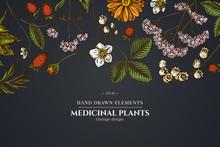 Floral Design On Dark Backgrou...