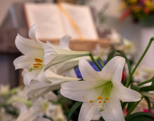 The Easter Word