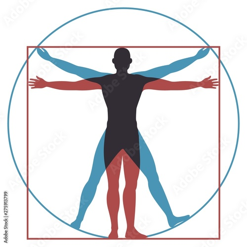 Vitruvian man. Leonardo da vinci human body perfect anatomy proportions in circle and square. Vector silhouette
