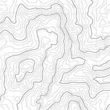 Topographic Map. Geographical Location Lines, Cartography Contour Line Nature Trails Relief Texture Image. Mapping Grid Vector Concept