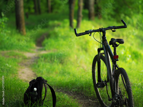 Garden Poster Bicycle Mountain bike on the background of green summer forest. Lifestyle. Ride a bike