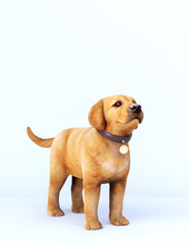 Golden Dog Puppy With Leather Collar On White Background 3D Rendering