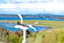 The Wind Direction Indicator, Gull-shaped Bird, Is Made By Hand From Wood.