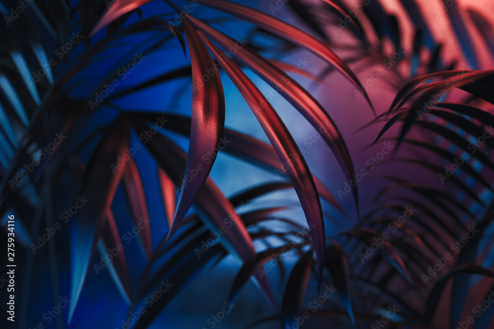 Fototapeta Tropical plants on blue and red neon background. empty space. 3D rendering.