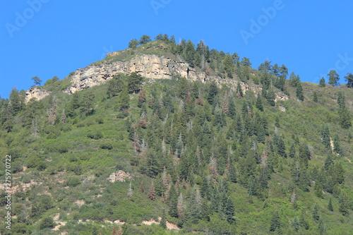 Baldy Peak Mountain Ouray Colorado