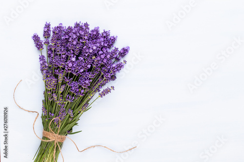 Lavender flowers on a white background. Canvas Print