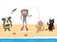 ペットたちの海遊び。
