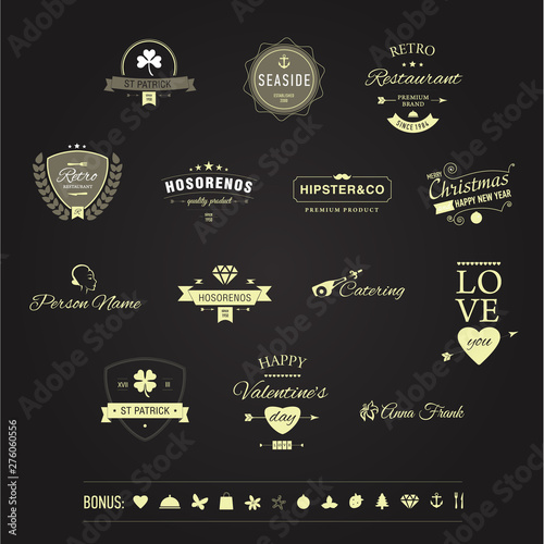 Vector Retro Vintage Emblem or Logotype Design Elements