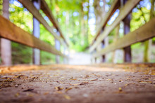 Adventures Journey, Self Discovery: Wooden Bridge In The Forest, Blurry Background