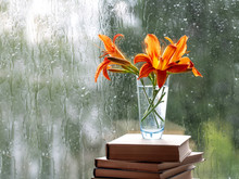 Orange Daylily Flowers In A Vase That Stands On Books. A Window With Raindrops. Green Blurred Background.