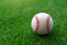Baseball Ball On The Grass