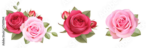 Fotografia Set of decorative pink roses with buds and leaves