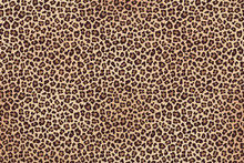 Leopard Spotted Brown Fur Horizontal Texture. Vector