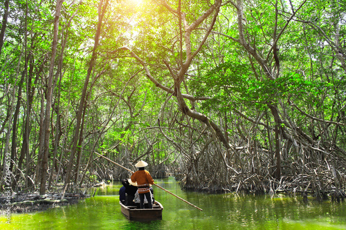 Cuadros en Lienzo People boating in mangrove forest, Malaysia