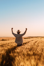 Proud Happy Victorious Wheat Farmer With Hands Raised In V
