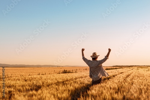 Fotografie, Obraz Proud happy victorious wheat farmer with hands raised in V