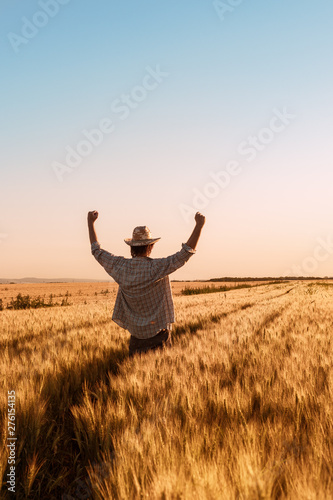 Photo  Proud happy victorious wheat farmer with hands raised in V