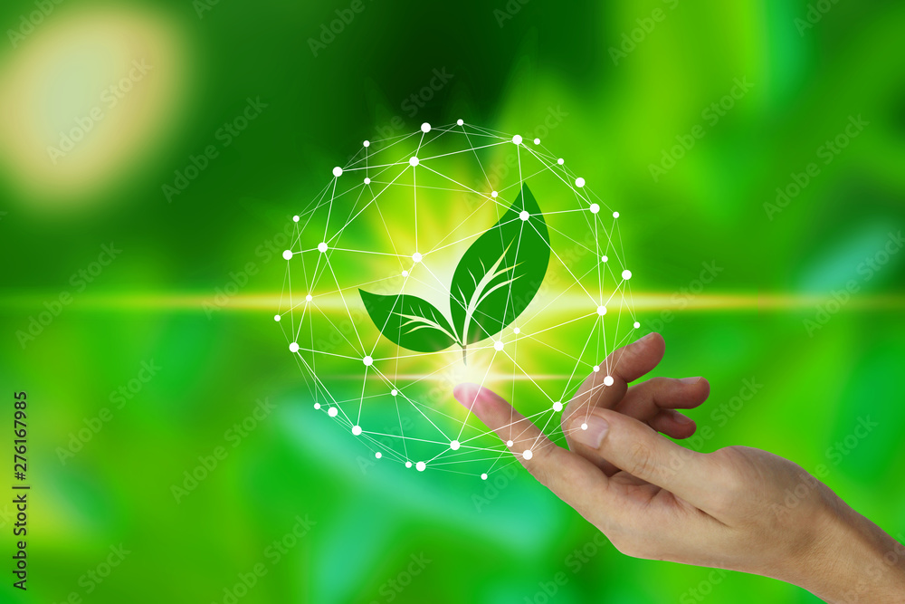 Fototapeta Finger touch with leaf icon over the Network connection on nature background, Technology ecology concept. environment concept