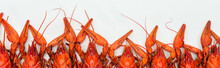 Panoramic Shot Of Red Lobsters...