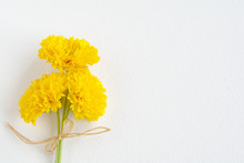 A Bunch Of Yellow Coreopsis Flowers On A White Sheet Of Watercolor .