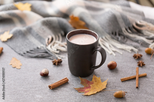 Foto auf Gartenposter Schokolade drinks and season concept - cup of hot chocolate, cinnamon, autumn leaves and warm blanket on grey background