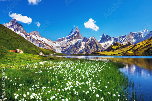 Scenic view on Bernese range above Bachalpsee lake Fototapeta