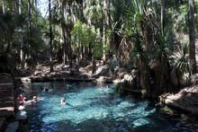 People Swimming At Mataranka H...