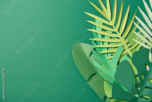 Pinturas sobre lienzo  top view of tropical paper cut palm leaves on green background with copy space