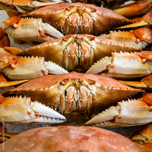 Pacific coast Dungeness crabs are stacked on ice for sale at a fish market