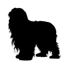 Bearded Collie ,Dogs, Silhouet...