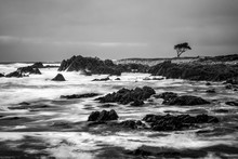 Black And White Dramatic Ocean...