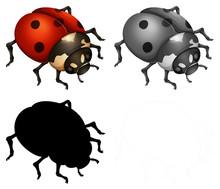 Set Of Lady Bugs