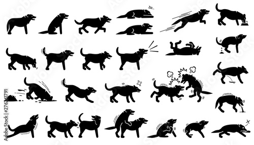Dog actions, reactions, postures, and body languages Wallpaper Mural