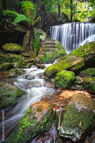 Cascading waterfall through lush rainforest Wall mural