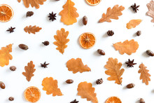 Pattern Made From Oak Leaves, Dry Orange, Anise, Acorns, Cones On White Background