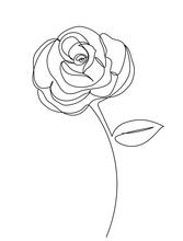 Rose Flower Line Drawing Art. Continuous Line. Editable Line Vector. Logo, Icon, Label For Design