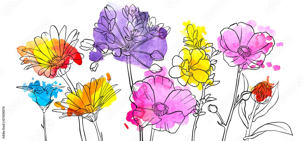 Fototapety, obrazy: vector drawing flowers