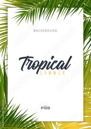 Letnie tropikalne liście palmowe. Drzewo egzotyczne palmy. Kwiatowy Tło.