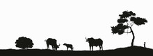 Black Silhouette Of African Buffalo On White Background. Isolated Scene With Bull Family. Landscape With Wild African Animals. Scene Of Savannah Wildlife. Travel Poster Of Africa
