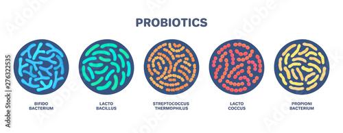 Probiotics Canvas Print