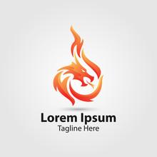 Dragon Fire Vector Logo.