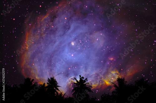 Fotografie, Obraz  blur purple galaxy nebula back on night cloud sky silhouette dry tree