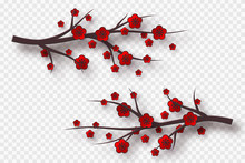 3d Cherry Branch With Red Flowers. Decorative Blossom Elements For Chinese New Year, Festivals Or Holiday Background. Isolated On Transparent. Vector Illustration.