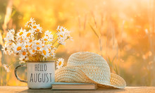 Hello August. Beautiful Composition With Chamomile Flowers In Cup, Old Book, Braided Hat In Garden. Rural Landscape Background With Chamomile In Sunlight. Summertime Season. Soft Selective Focus