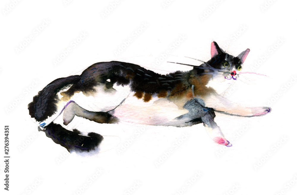 Fototapety, obrazy: Cute watercolor cat on a white background. Hands drawn kitten illustration -